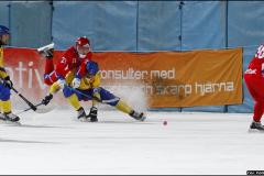 131207 Sverige-Ryssland Heden Göteborg 7-3(3-2)