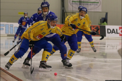 190128 AWC Sweden-Finland 6-0(1-0) AleSurte