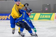 Sverige - Kazakhstan 2019-01-30-10