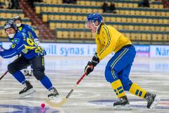 Sverige - Kazakhstan 2019-01-30-11