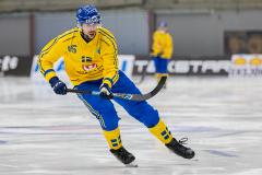 Sverige - Kazakhstan 2019-01-30-12