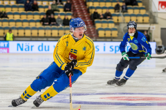 Sverige - Kazakhstan 2019-01-30-13