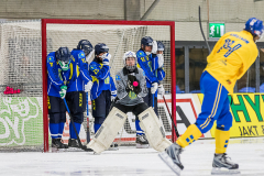 Sverige - Kazakhstan 2019-01-30-14