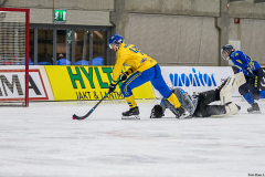Sverige - Kazakhstan 2019-01-30-15