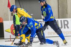 Sverige - Kazakhstan 2019-01-30-16