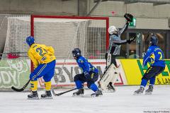 Sverige - Kazakhstan 2019-01-30-17
