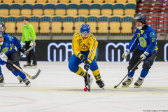 Sverige - Kazakhstan 2019-01-30-18