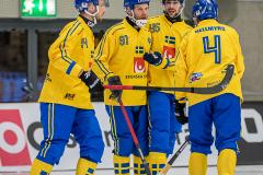 Sverige - Kazakhstan 2019-01-30-20