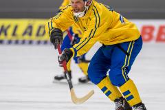 Sverige - Kazakhstan 2019-01-30-21