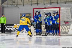 Sverige - Kazakhstan 2019-01-30-3