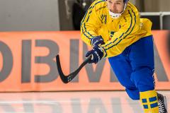 Sverige - Kazakhstan 2019-01-30-4