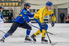 Sverige - Kazakhstan 2019-01-30-6
