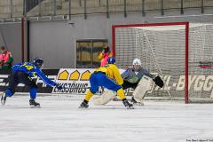 Sverige - Kazakhstan 2019-01-30-7