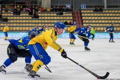Sverige - Kazakhstan 2019-01-30-8