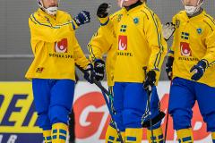 Sverige - Kazakhstan 2019-01-30-9