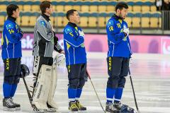 Sverige - Kazakhstan 2019-01-30